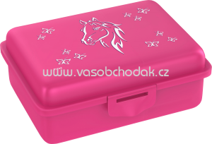 Fizzii Lunchbox pink, 1 St